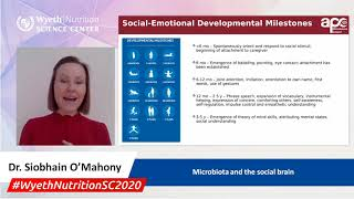 Microbiota and the social brain - Dr. Siobhain O'Mahony